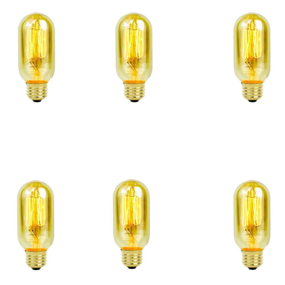 60-Watt Incandescent T45 Thomas Edison Vintage Filament Light Bulb (6-Pack)