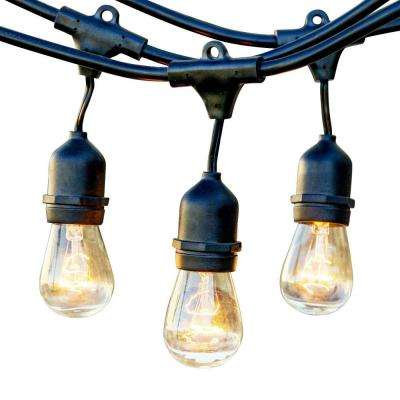 25 ft. Outdoor String Lights Commercial Grade Incandescent Hanging Lights - 10 Light Bulbs Included