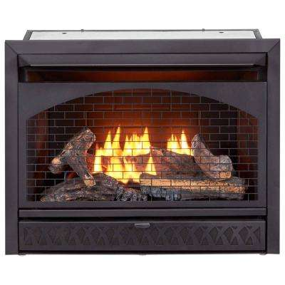 Excellent Gas Fireplace Insert Duel Fuel Technology 26 000 Btu Beutiful Home Inspiration Xortanetmahrainfo