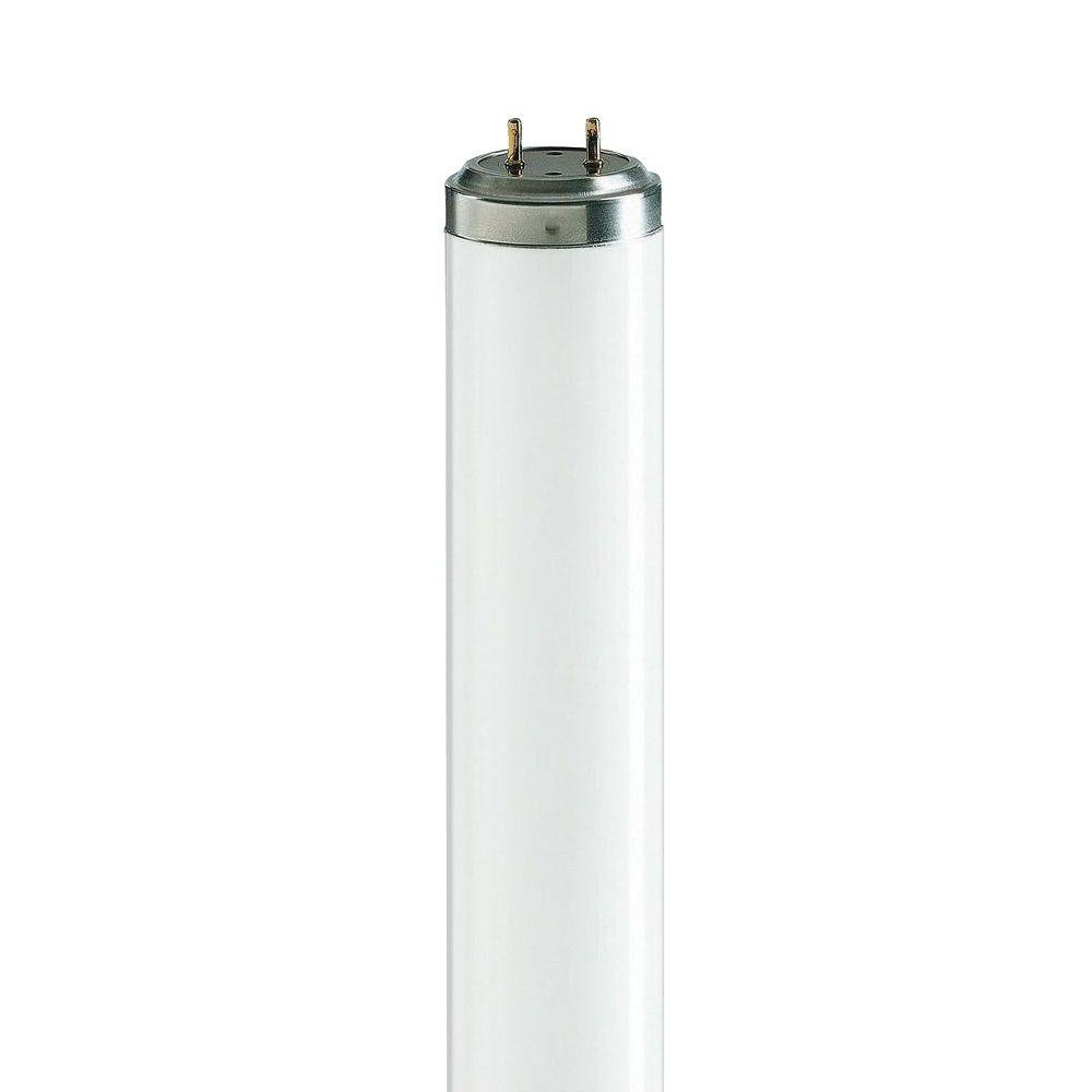 2 ft. T12 40-Watt Actinic BL Linear Fluorescent Light Bulb (25-Pack)