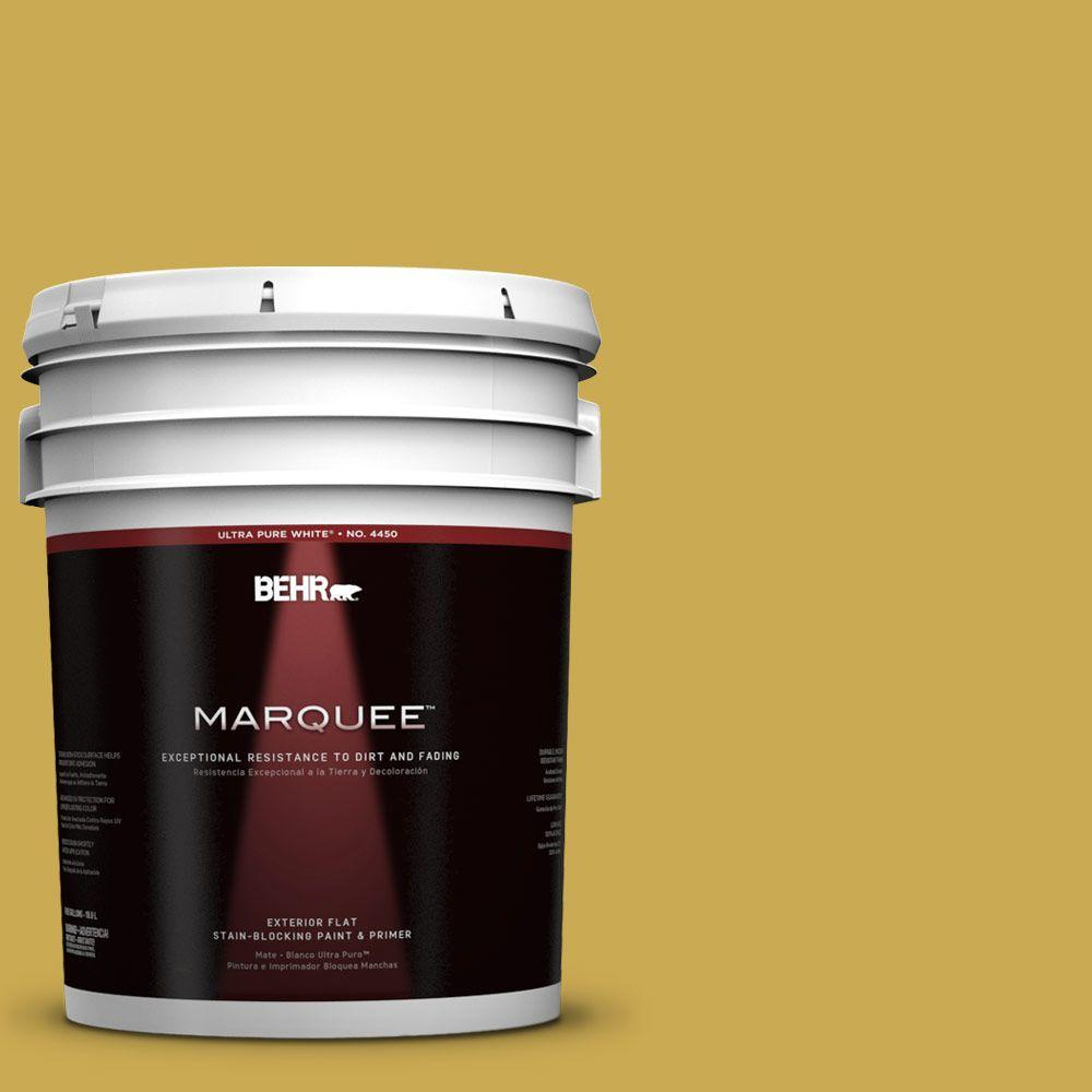 BEHR MARQUEE 5-gal. #380D-6 Leapfrog Flat Exterior Paint