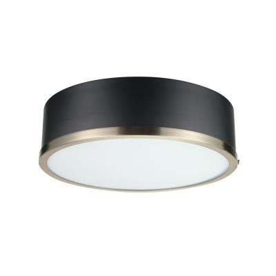 Selina 14 in. 2-Light Matte Black Flush Mount Ceiling Light with Frosted Glass Shade