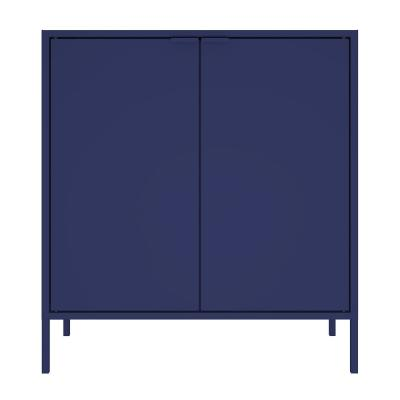 Smart 29.92 in. Blue Double Wide High Cabinet