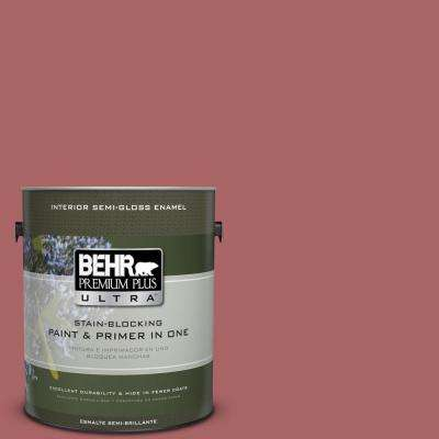 #PPU1-6 Rose Marquee Paint