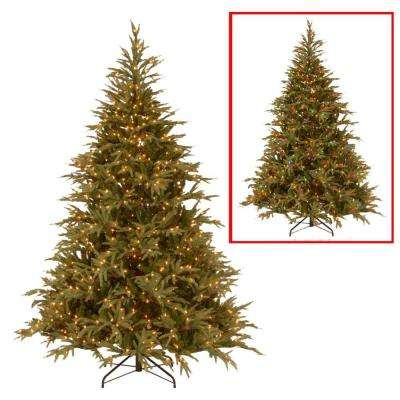 6 ft. Frasier Grande Artificial Christmas Tree with Dual Color LED Lights