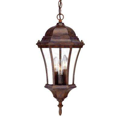 Brynmawr Collection Hanging Lantern 3-Light Outdoor Burled Walnut Light Fixture