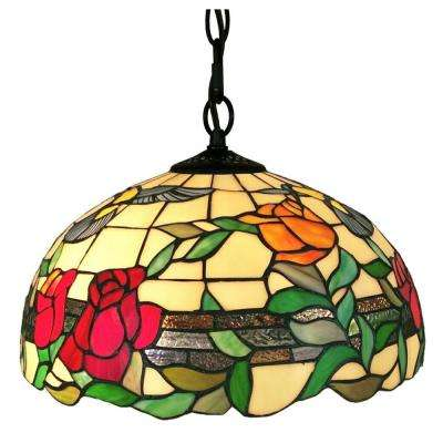 2-Light Multicolored Pendant
