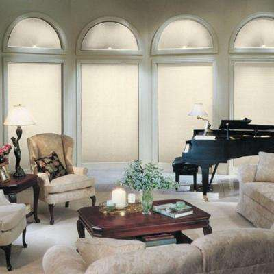 DiamondCell Blackout Arch Cellular Shade