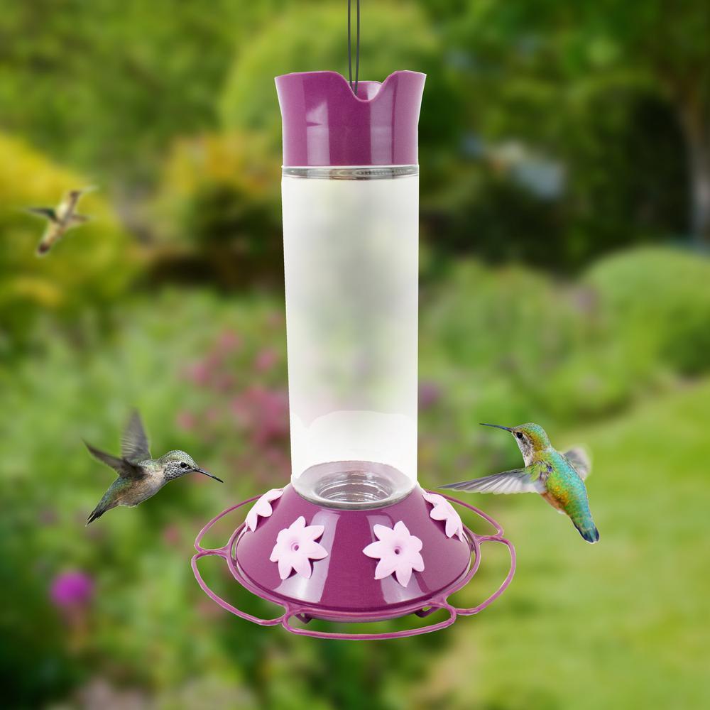 Our Best Wine Base Glass Hummingbird Feeder - 30 oz. Capacity