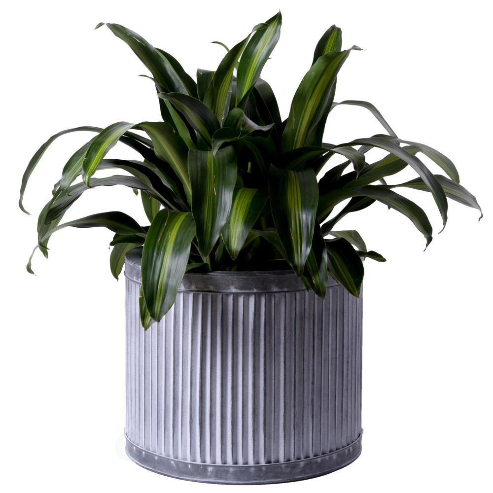 Large Rustic Galvanized Metal Corrugated Round Planter Pot
