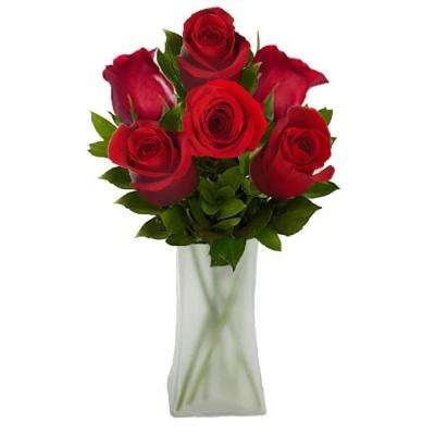 Gorgeous Red Rose Bouquet in Clear Vase (6 Stem) Overnight Shipping Included