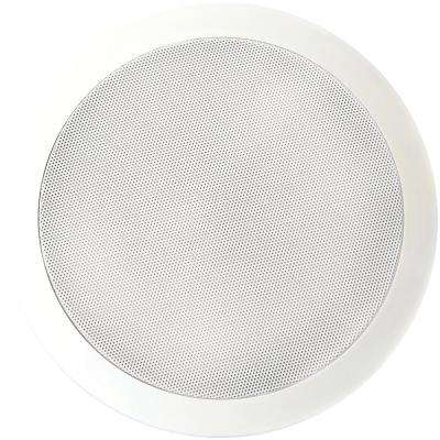 Muro 6.5 in. Dual Voice-Coil Stereo Ceiling Speaker