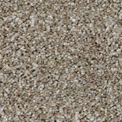 Carpet Sample - Trendy Threads II - Color Meridian Texture 8 in. x 8 in.