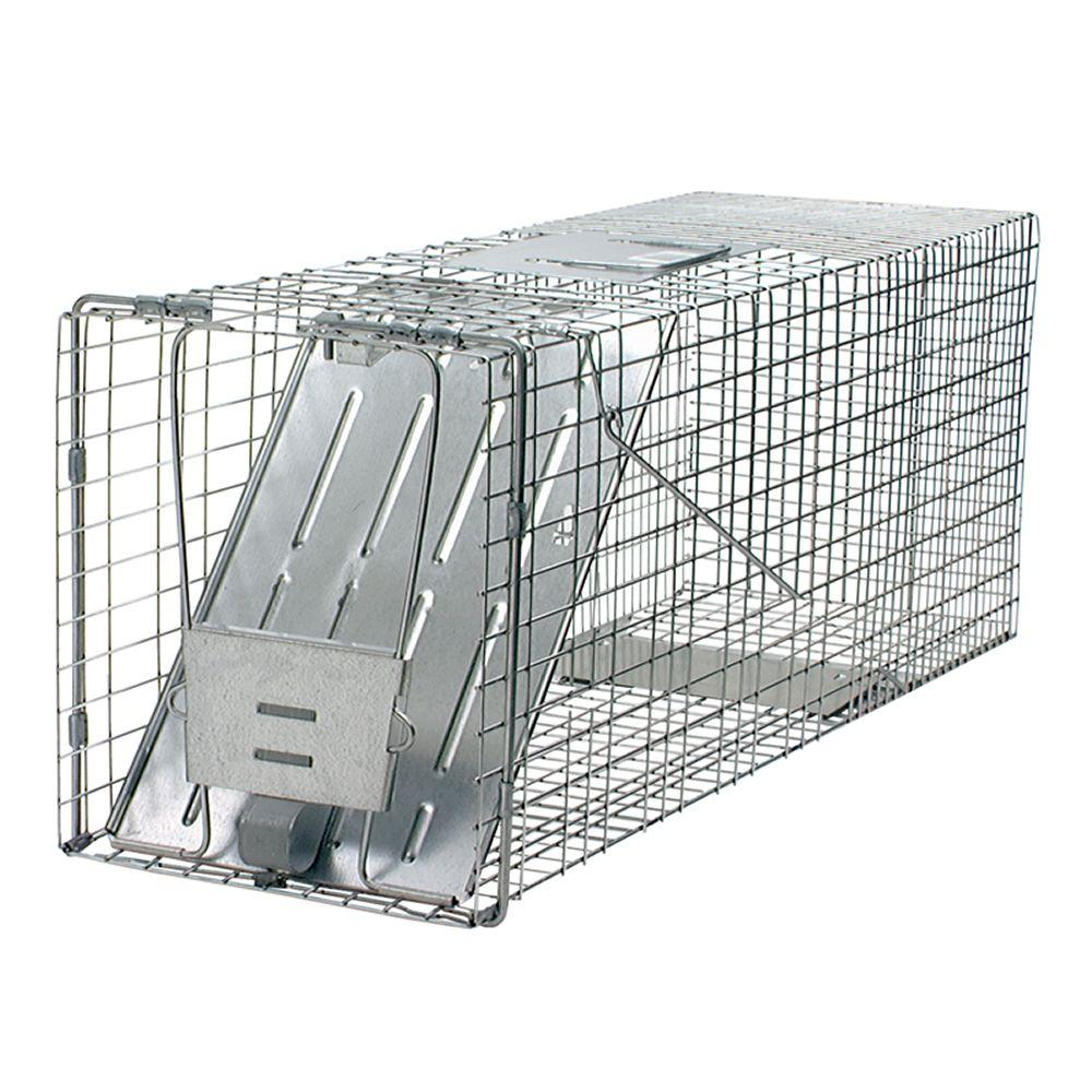 Havahart Large 1-Door Professional Live Animal Cage Trap for Raccoon, Opossum, Groundhog, and Feral Cat