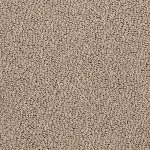 Platinum Plus Carpet Sample Out Of Sight Iii Color Sandstone Texture 8 In X Sh 368434 The Home Depot