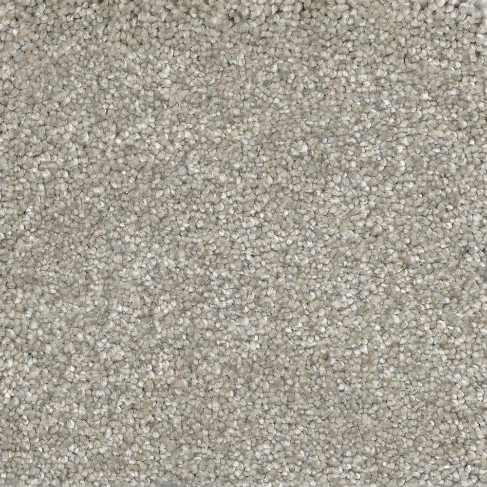 Color Abbey Texture 12 ft. Carpet-H0117