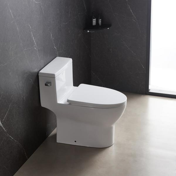 Eridanus Single Flush One Piece 1 28 Gpf Elongated Toilet In White Soft Closing Seat Included High Efficiency Water Sense Jun Toilet 013 The Home Depot