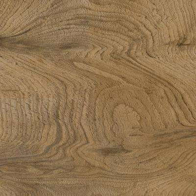 Dunbar Graze 5 in. x 48 in. Glue Down Luxury Vinyl Plank Flooring (20.00 sq. ft. / case)