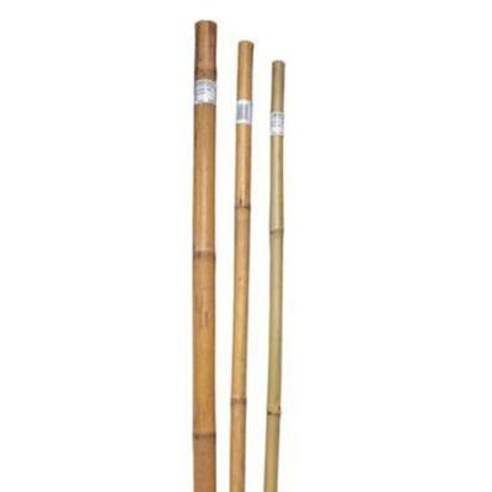 8 ft. x 1 in. Super Pole (100-Pieces per Pack)