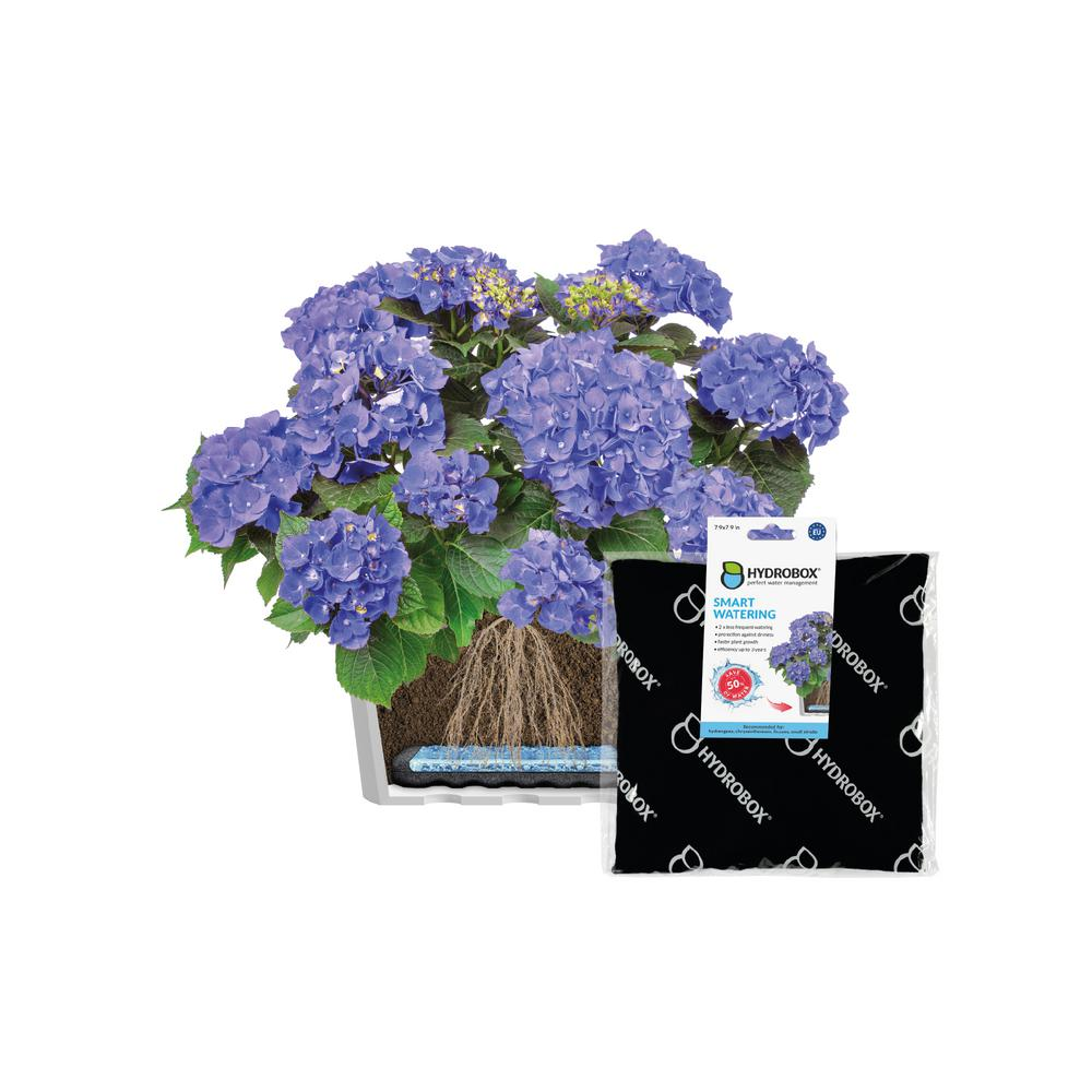 Hydrobox - 7 9 in  Smart Plant Watering, HDPE, PES