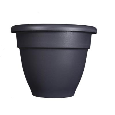 Caribbean 6 in. Dia Black Plastic Planter with Removable Drain Plug