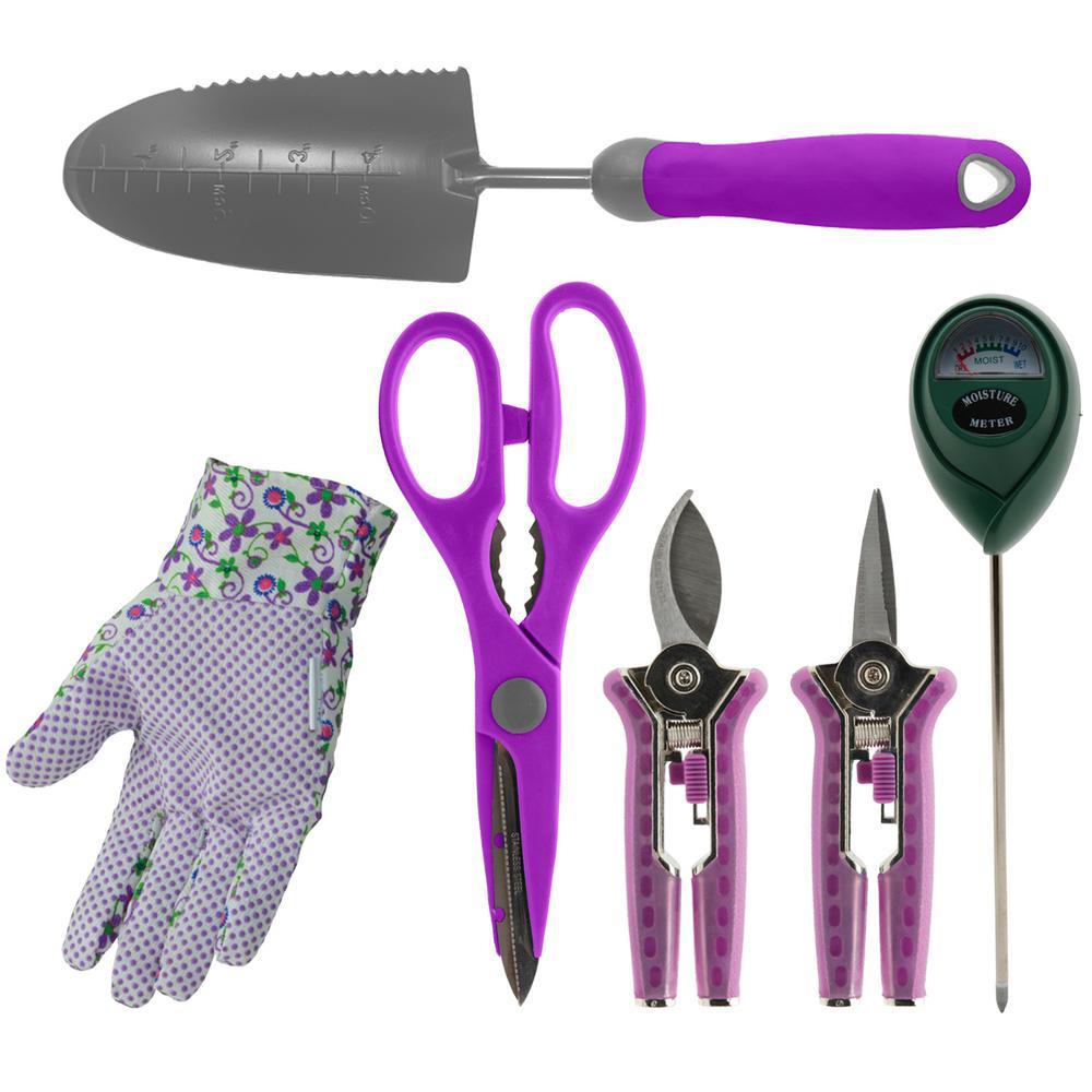 Bloom Indoor Houseplant Kit In Purple 6 Piece