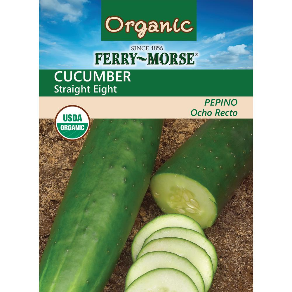 Cucumber Straight Eight Organic Seed