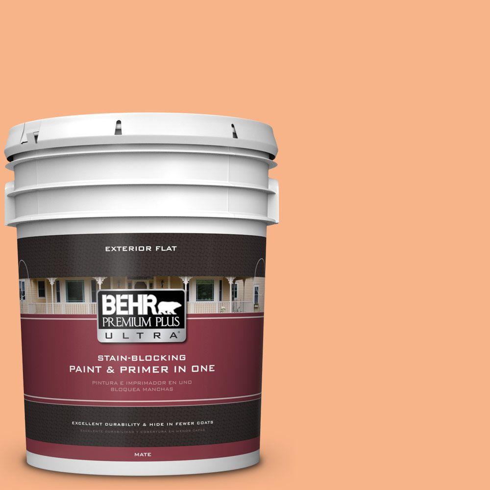 BEHR Premium Plus Ultra 5-gal. #250D-4 Autumn Mist Flat Exterior Paint
