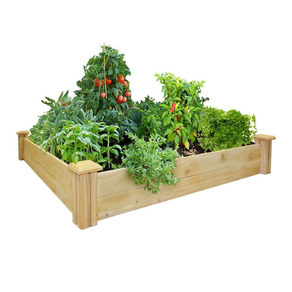 Cedar Raised Garden Bed RC 4C4   The Home Depot