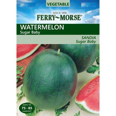 Watermelon Sugar Baby Heirloom Vegetable Seeds