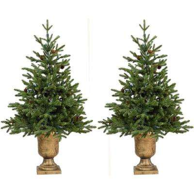 3 ft. Noble Fir Artificial Trees with Metallic Urn Bases (Set of 2)