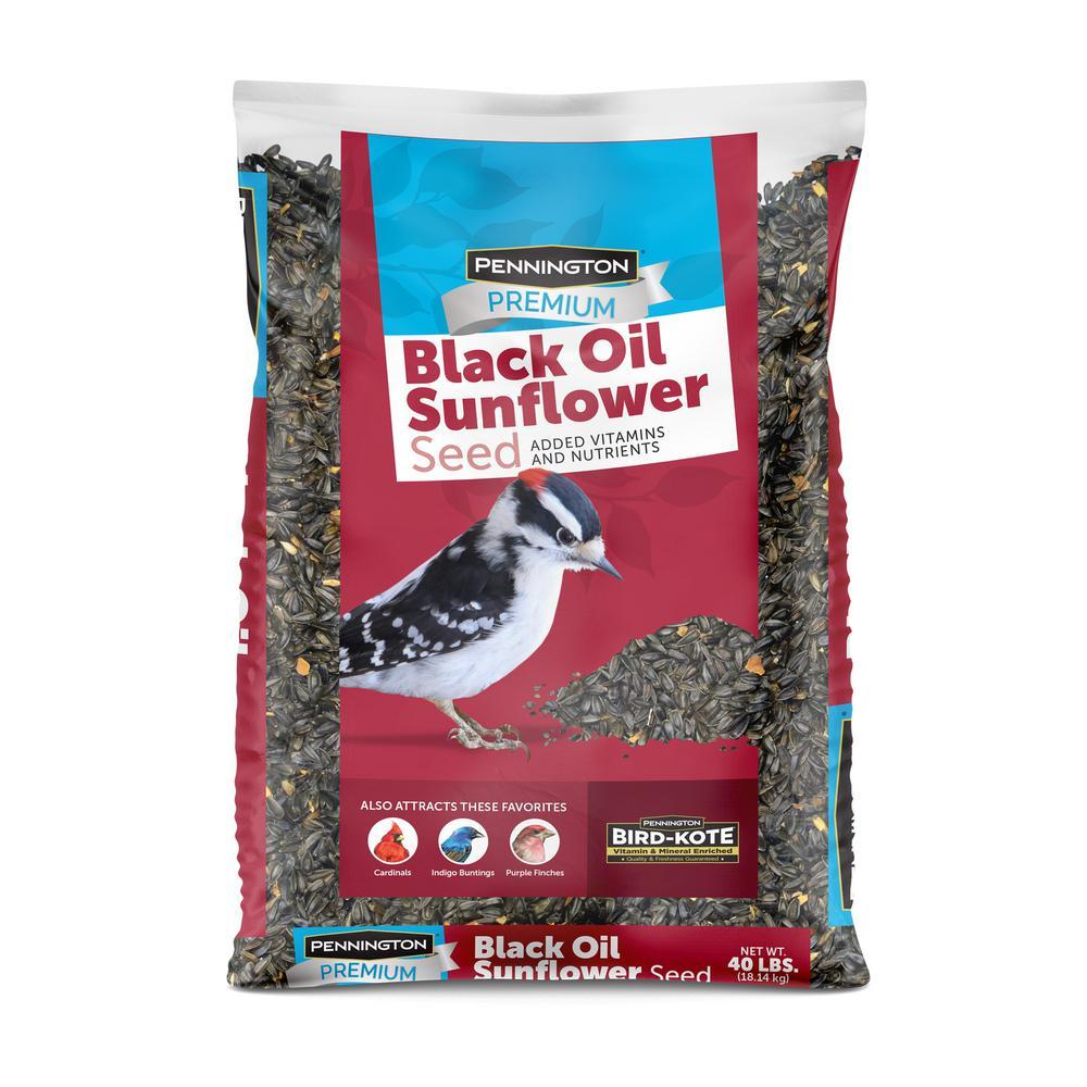 40 lbs. Premium Black Oil Sunflower Bird Seed