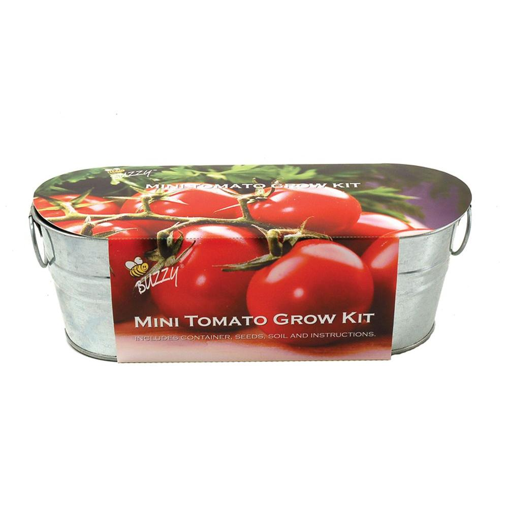 Buzzy Mini Tomato Windowsill Grow Kit 94887 The Home Depot