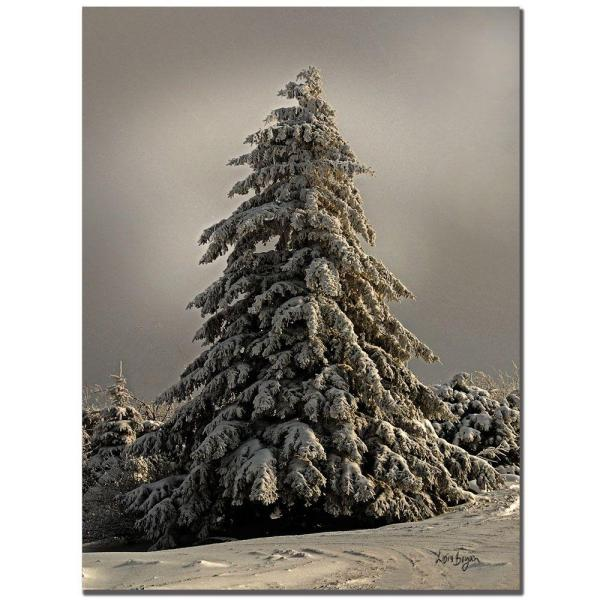 Trademark Fine Art 24 in. x 16 in. Standing Tall Canvas