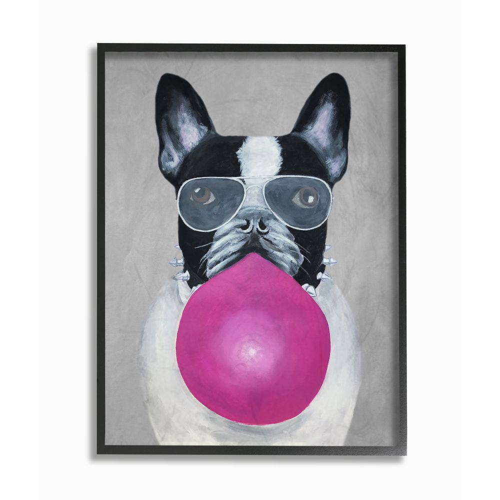 The Stupell Home Decor Collection 11 In X 14 In French Bulldog With Bubblegum And Glasses By Coco De Paris Framed Wall Art Cdp 109 Fr 11x14 The Home Depot