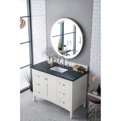 Palisades 48 in. Single Bath Vanity in Bright White with Quartz Vanity Top in Charcoal Soapstone with White Basin