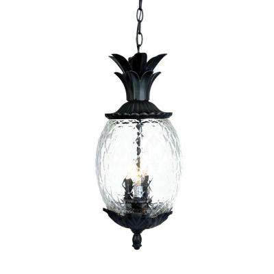 Lanai Collection 3-Light Matte Black Outdoor Hanging Light Fixture