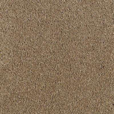 Pagliuca II - Color Weathered Wood Texture 12 ft. Carpet
