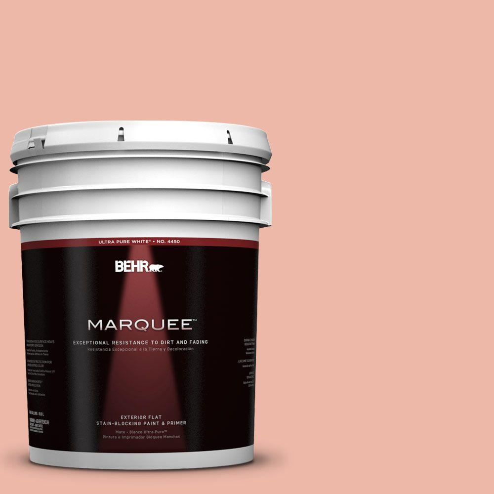 BEHR MARQUEE 5-gal. #210C-3 Jovial Flat Exterior Paint