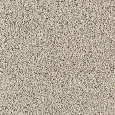 Carpet Sample - Ashcraft I - Color Dewdrop Texture 8 in. x 8 in.
