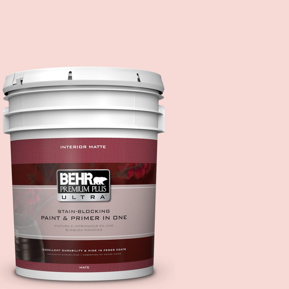 5 gal. #M160-1 Cupcake Pink Matte Interior Paint