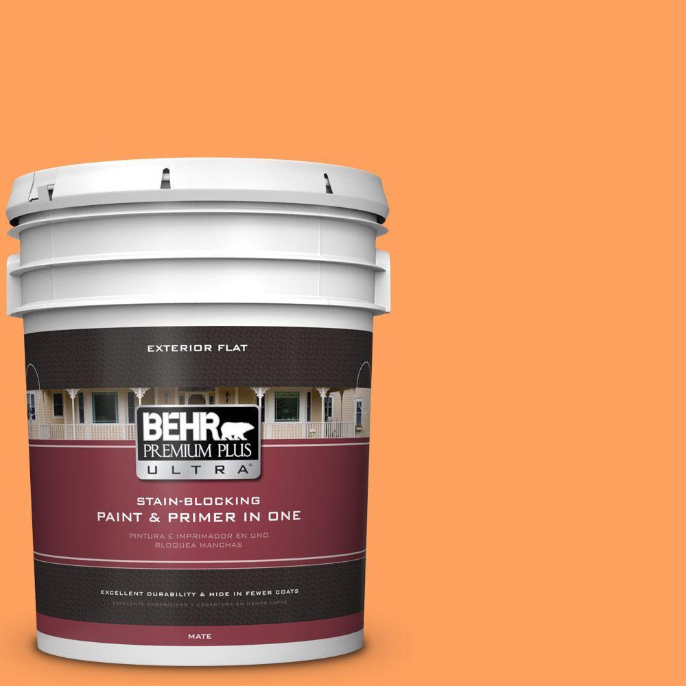 BEHR Premium Plus Ultra 5-gal. #250B-5 Orange Spice Flat Exterior Paint