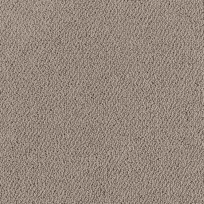Carpet Sample - Lower Treasure - Color Pewter Loop 8 in. x 8 in.