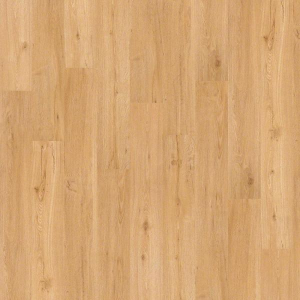 Wisteria 6 mil Nougat 6 in. x 48 in. Glue Down Vinyl Plank Flooring (53.93 sq. ft./case)