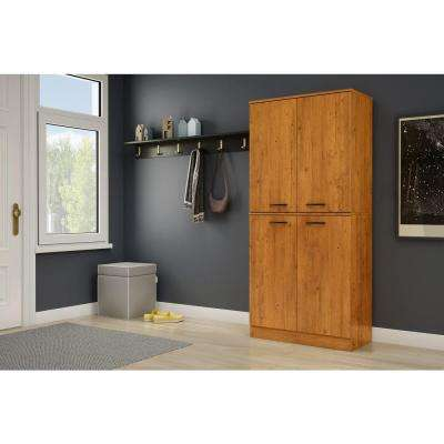 Axess Country Pine Storage Cabinet