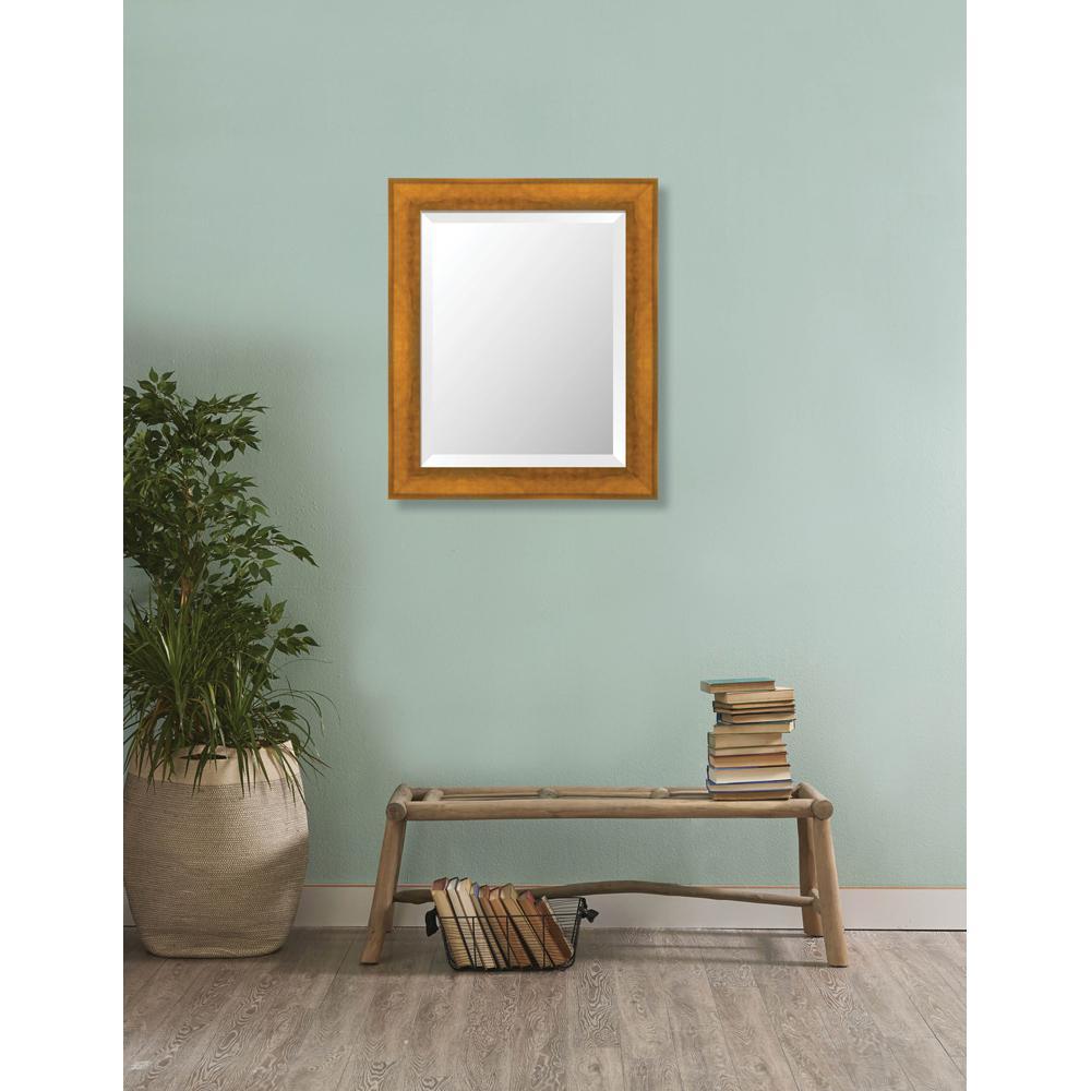 Larson-Juhl Camden 20.625 in. x 24.625 in. Modern Framed Bevel ...