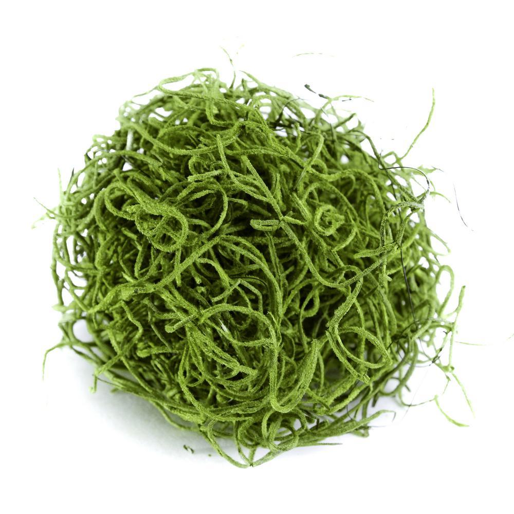 Shop Succulents Spanish Moss, Grass