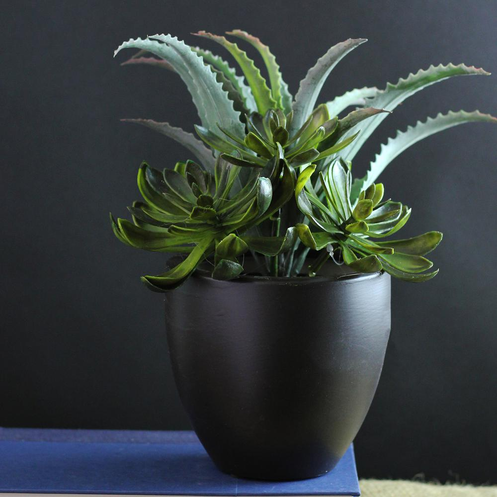 northlight indoor artificial succulent the home depot