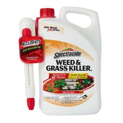 Weed and Grass Killer 1.3 gal. Accushot Sprayer
