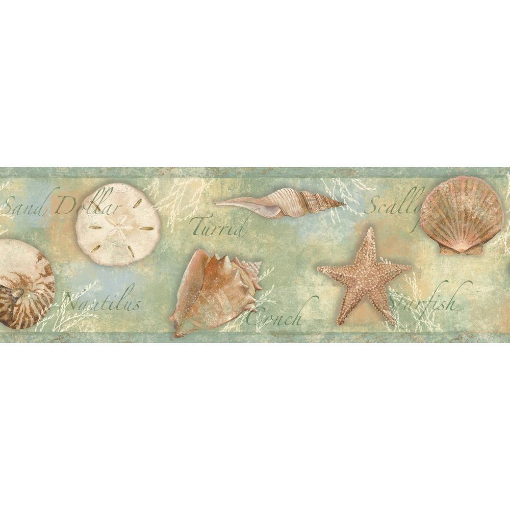 Quinten Green Seashells Toss Wallpaper Border Chesapeake BBC46052B
